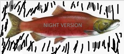 A Night of Salmonz